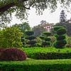 Garden at Zhongshan Park (2013-03-04_0825)