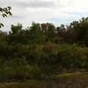 2011-10-03_0989