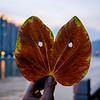 Photo taken on a Fuji X-E2 and 18-55mm kit lens. Shaoguan, Guangdong China.