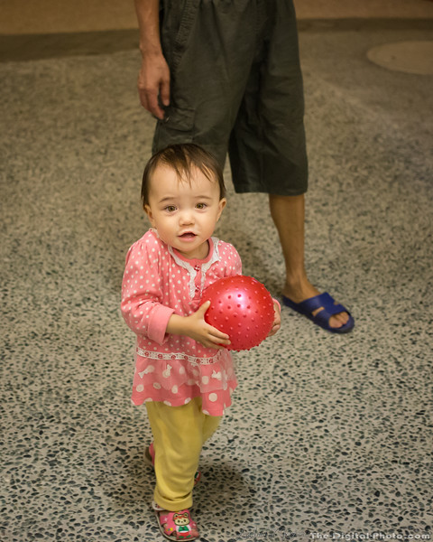 Cute Peggy holding a ball (2013-10-09_2975)