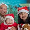 2012-12-25_1822