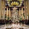 Driskill Lobby Tree