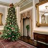 Driskill Maximilian Christmas Tree