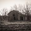 Hutto Farm Remnants