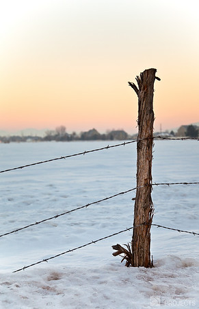 Just Between You, Me and the Fencepost 2
