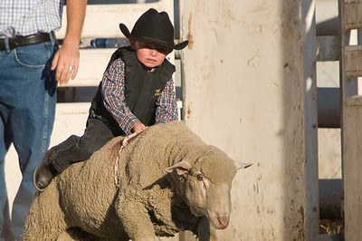 Mutton Busting Cropped