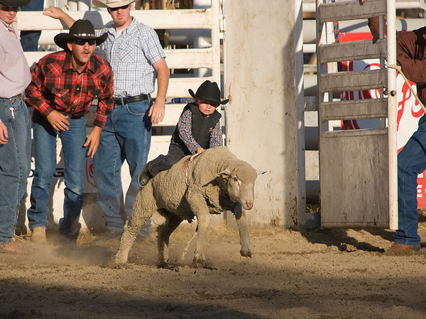 Mutton Busting Full