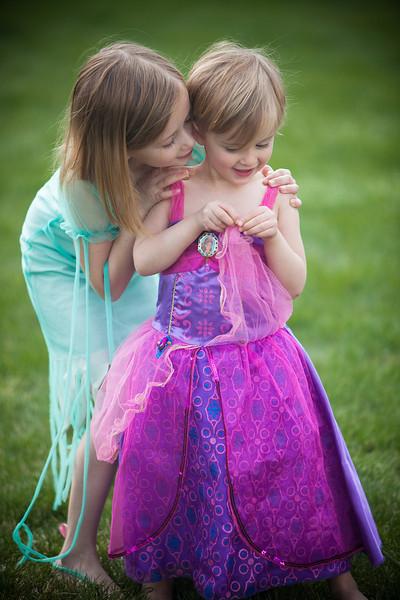Fairy Secret