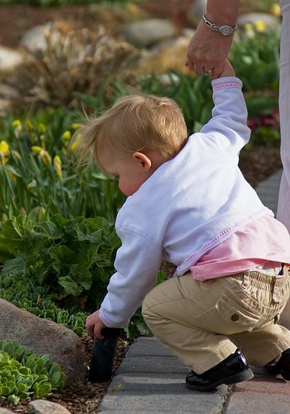 Children's curiousity