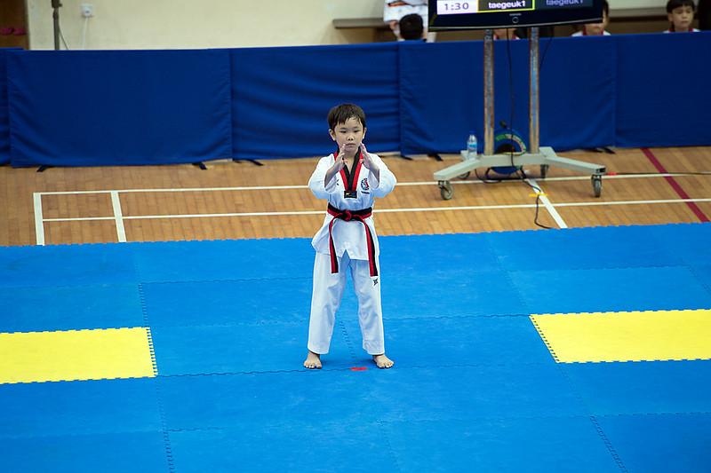 National Taekwondo Poomsae Championships (2013)