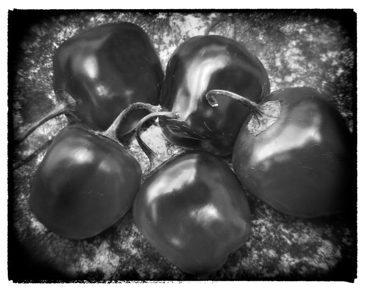 Chiles de Cera 1