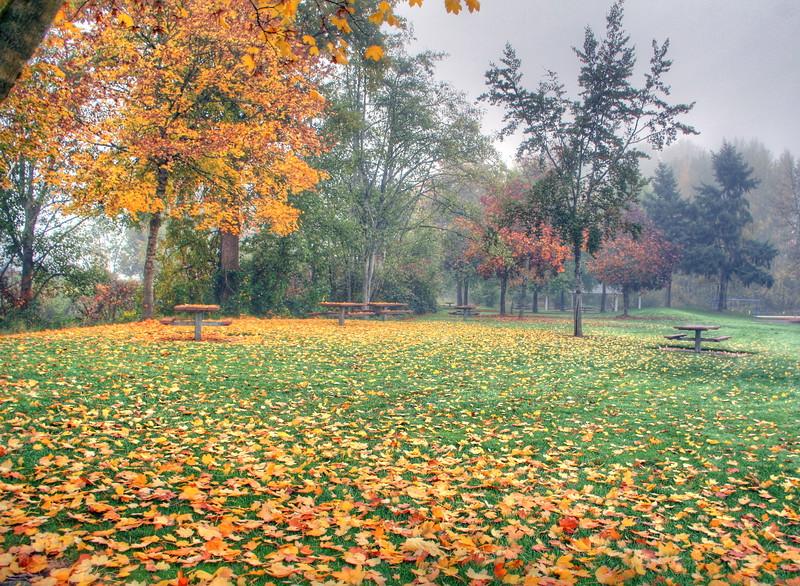 Klineline park fall 2