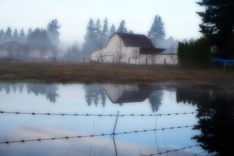 Reflected fog 2 (orton).jpg
