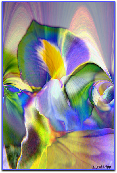 Iris colored