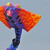 BalloonFest_0025