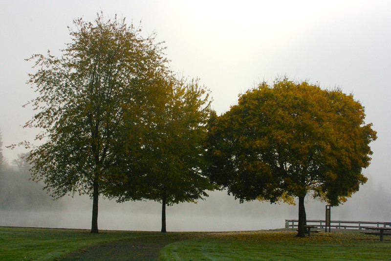 Klineline path to pond