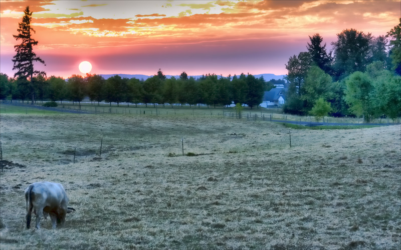 Rural Sunset Summer 08