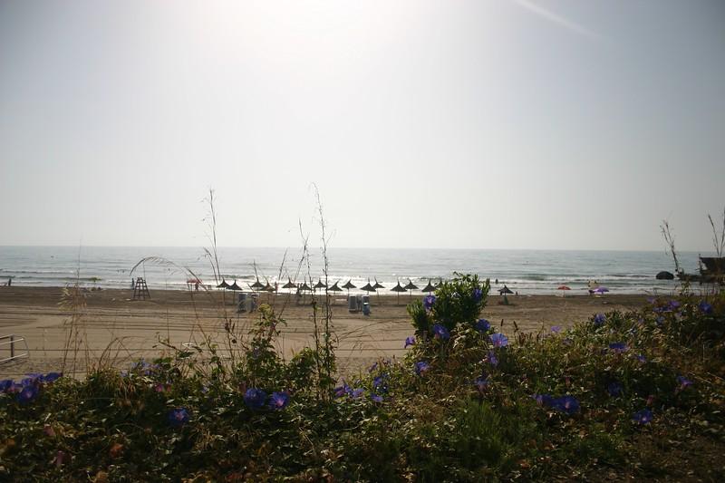 Aloceber Beach