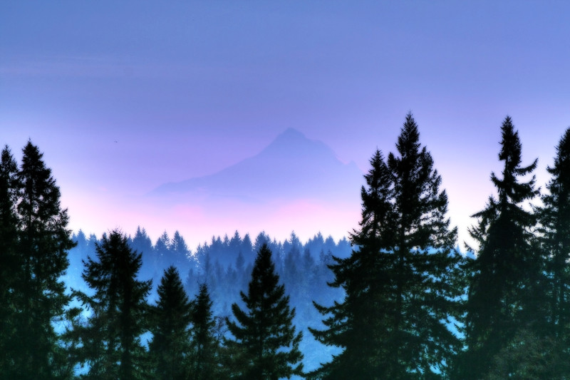 mt hood in the fog orton