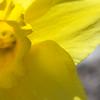 Pics_20090416_0149