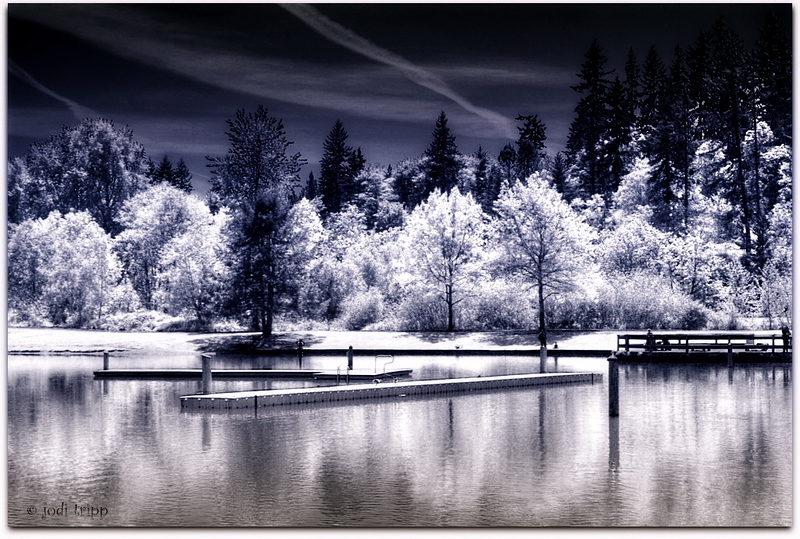infra-red Klineline pond