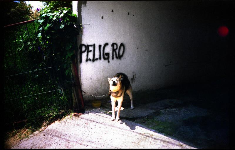 Peligro / Danger