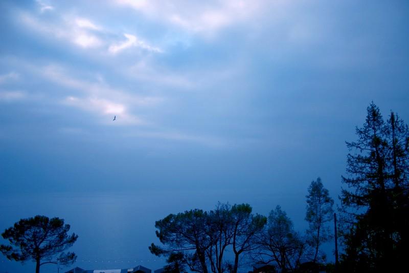 Montreux1blue.jpg