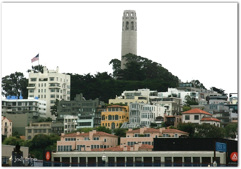 coit tower light.jpg