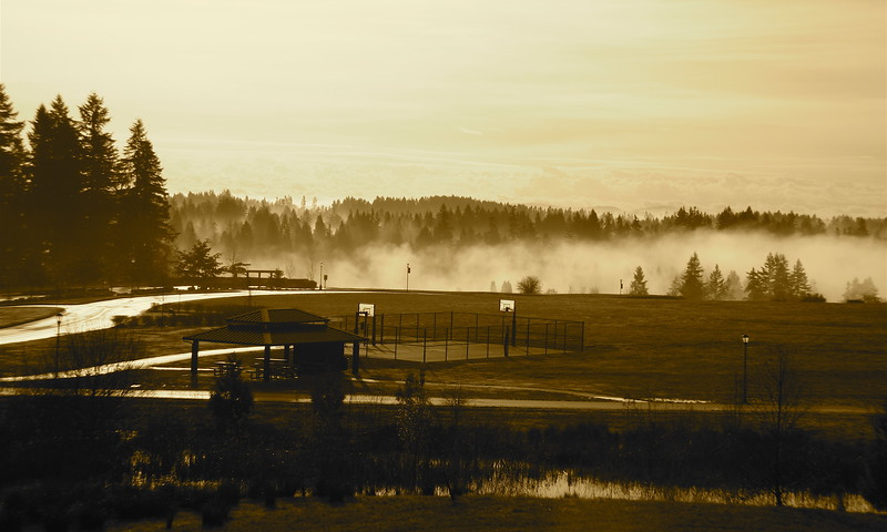 Fog over WSUV