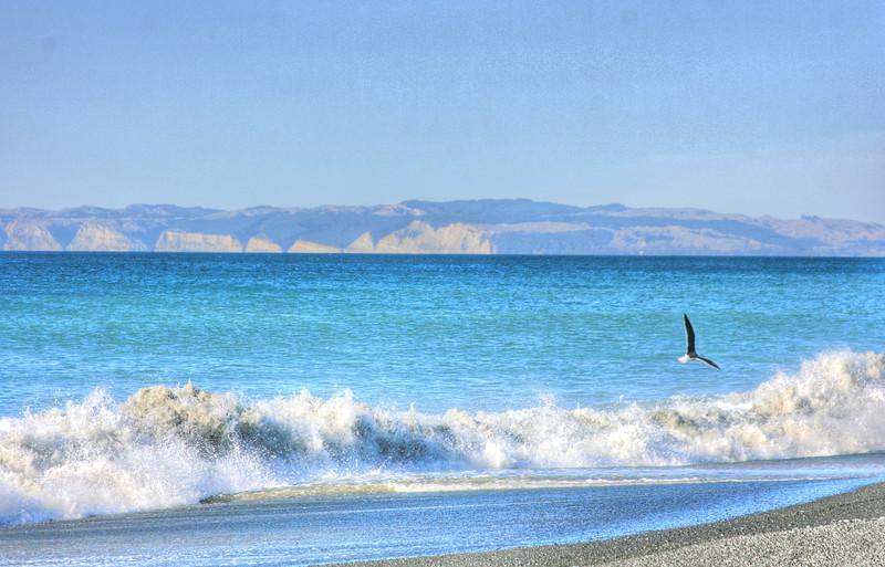Napier Beach hdr.jpg