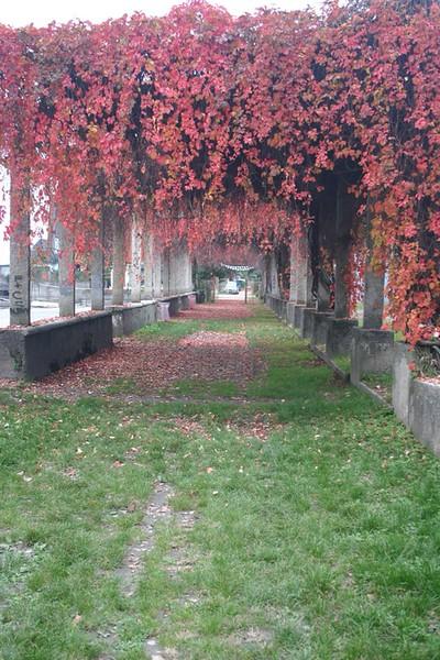 Stresa, Italy  Oct. 22, 2005