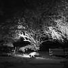 Snowday_0017