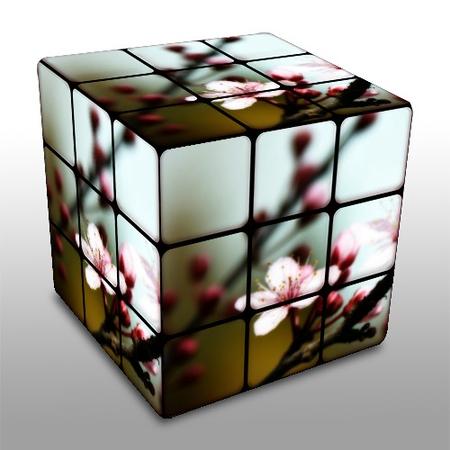 Plum blossom cube