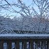 Snowday_0019adj