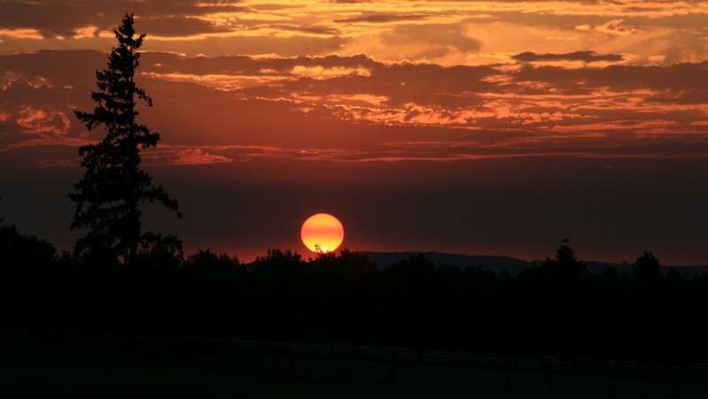 Rural sunset 8-15-08