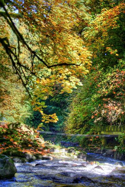 cedar creek 3