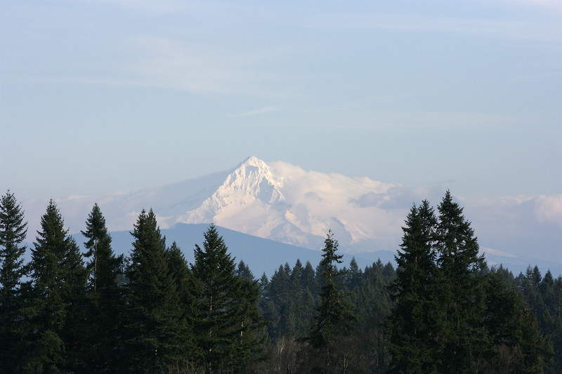 Mt Hood Winter