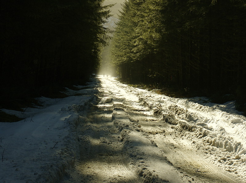 down the snowy road