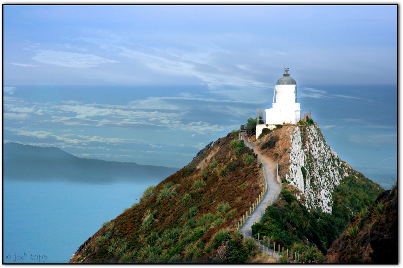 merged  nugget point photos.jpg