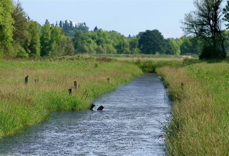 Wildlife Refuge in Ridgefield in WA