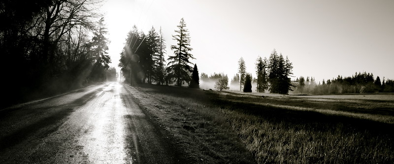 Country road in Black and White