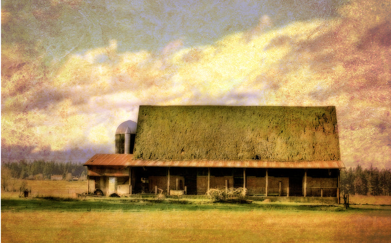 OLD barn texture colored