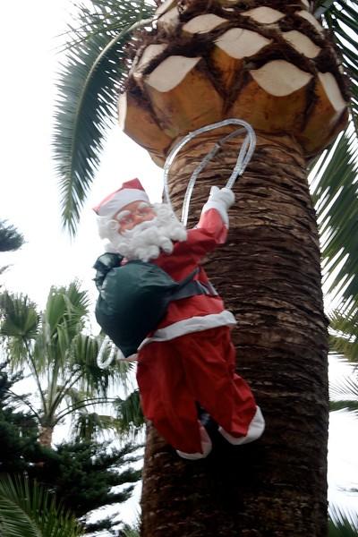 """Tropical Santa"""