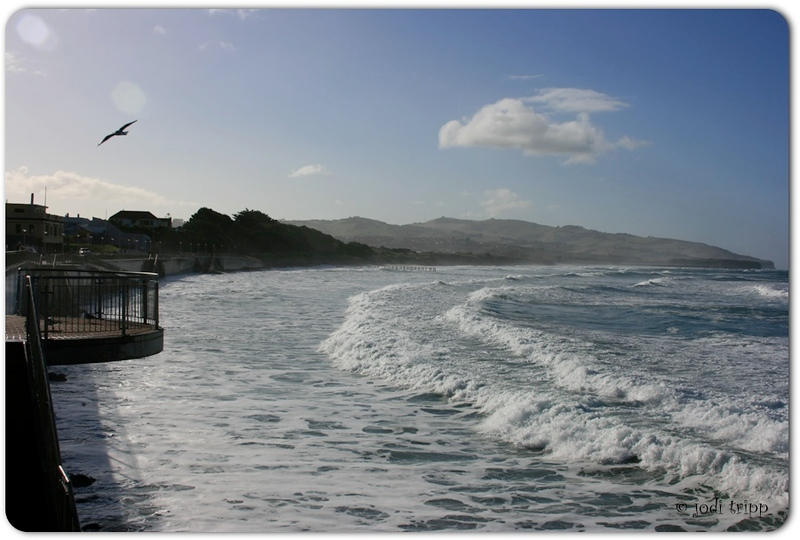 St. Clair Beach, Dunedin, NZ