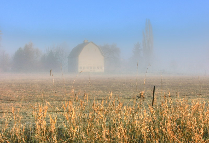 barn in the fog-sunbreak
