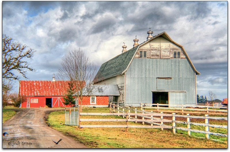 Blue and red barns