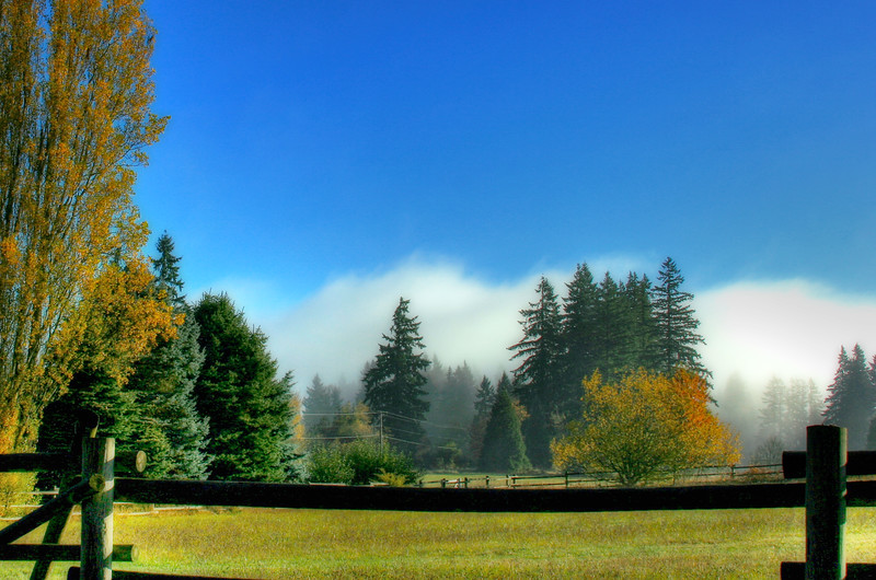 40th field fall morning