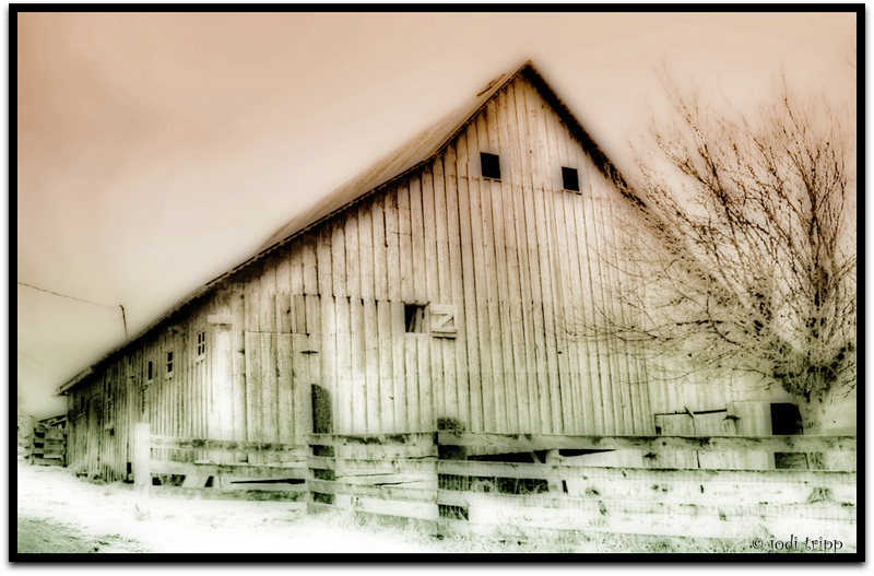 Rural Barn .jpg
