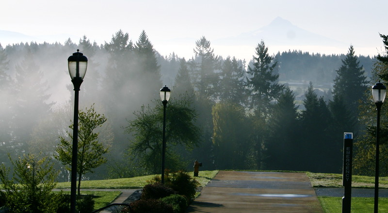 View of Mt. Hood from WSU Vancouver