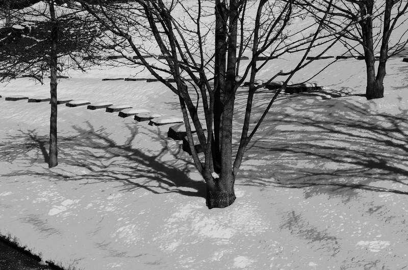 Snowday_0034adj2